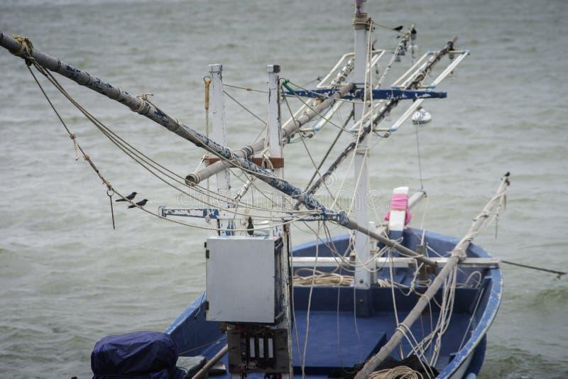 Łyka ptaki wiesza przy arkaną na tradycyjnej łodzi rybackiej wśród morza Selekcyjna ostrość zdjęcie royalty free
