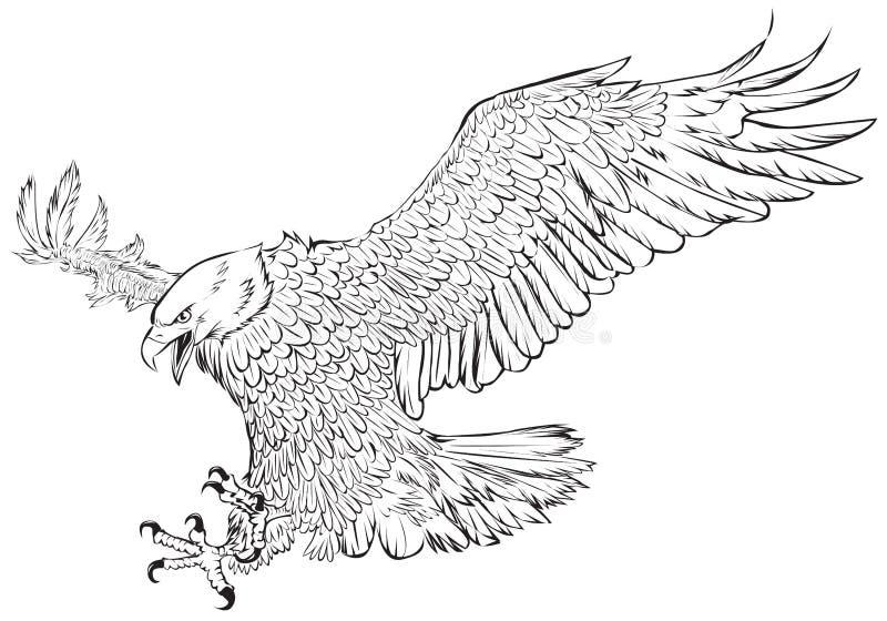 Łysego orła nurkowania ręki remisu monochrom na białym tło wektorze royalty ilustracja