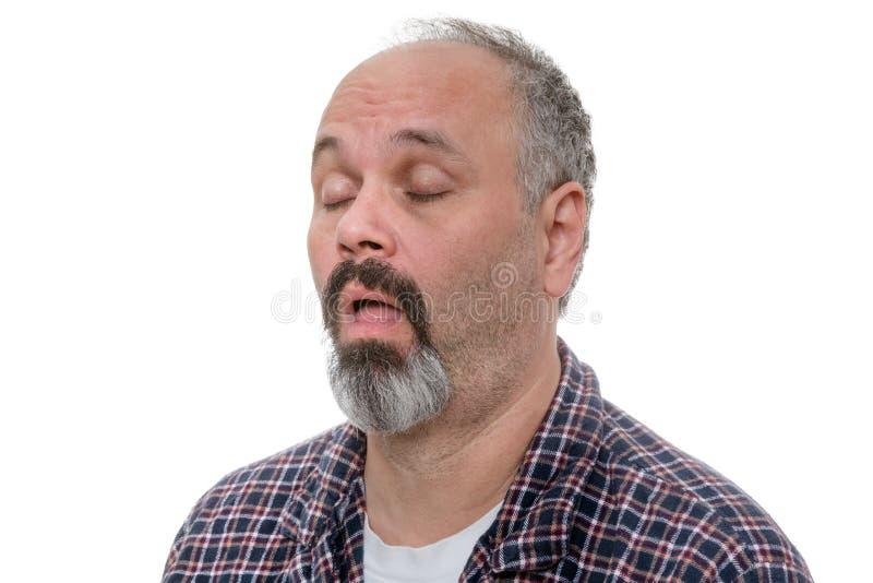 Łysienie mężczyzna z brody i szkockiej kraty koszula chrapa obraz stock