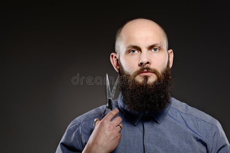 Łysy mężczyzna trzyma parę nożyce z brodą zdjęcia royalty free