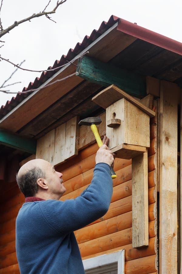 Łysy senior z wąsy dołącza birdhouse stajnia zdjęcie stock