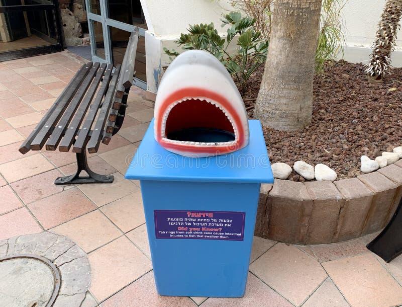 Łzawica w formie szczęk rekin fotografia royalty free