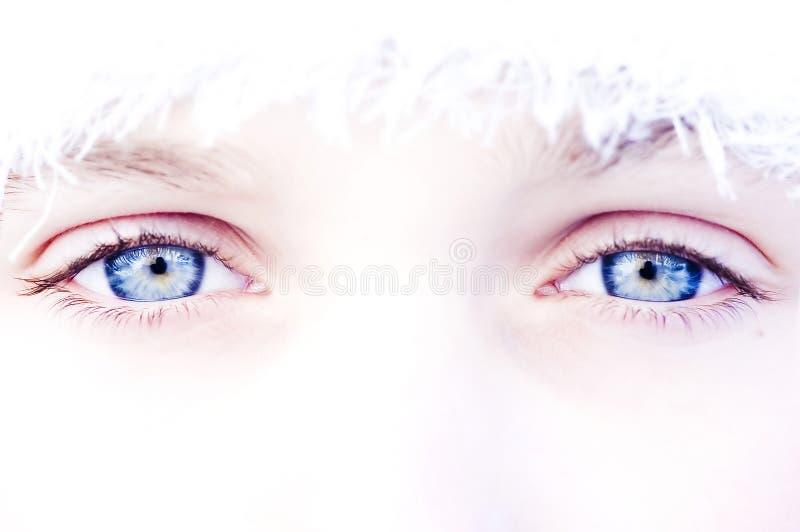 œil bleu photographie stock