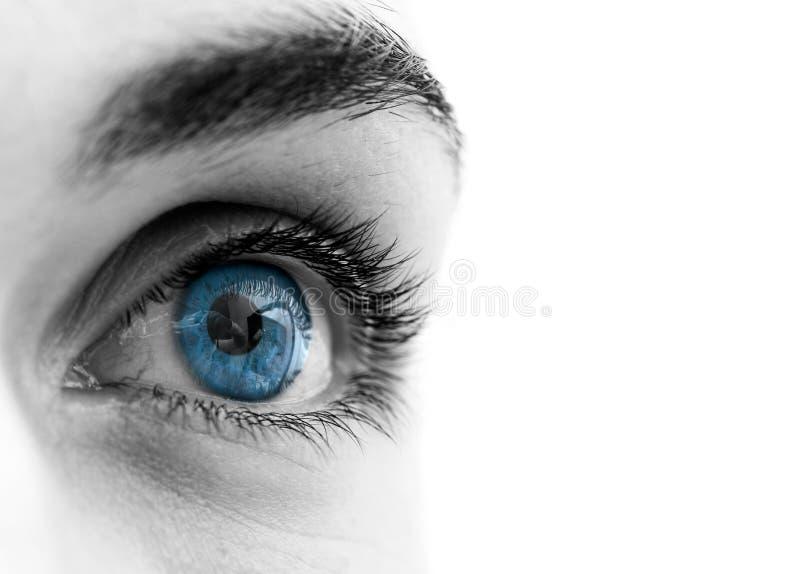 œil bleu photo libre de droits