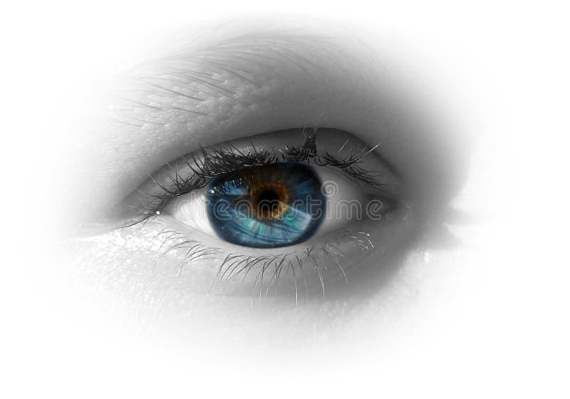 œil bleu de femme photo libre de droits