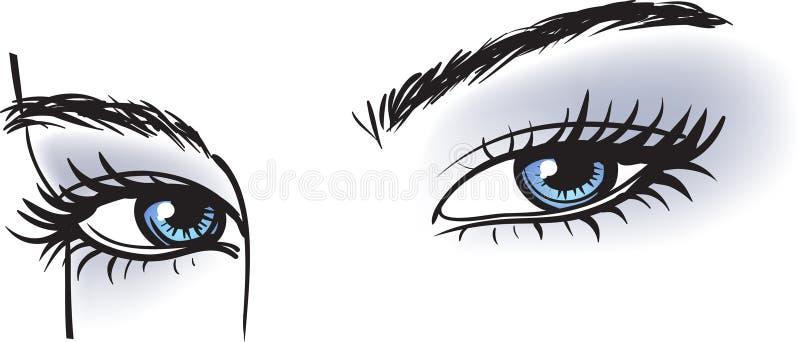 œil bleu femelles illustration libre de droits