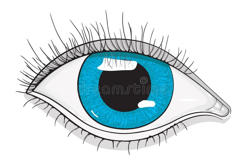 œil bleu humain illustration stock