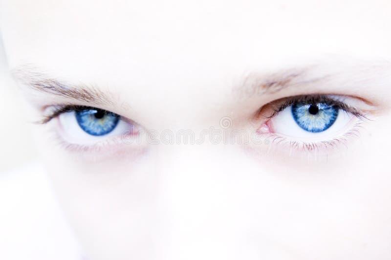 œil bleu intenses images libres de droits