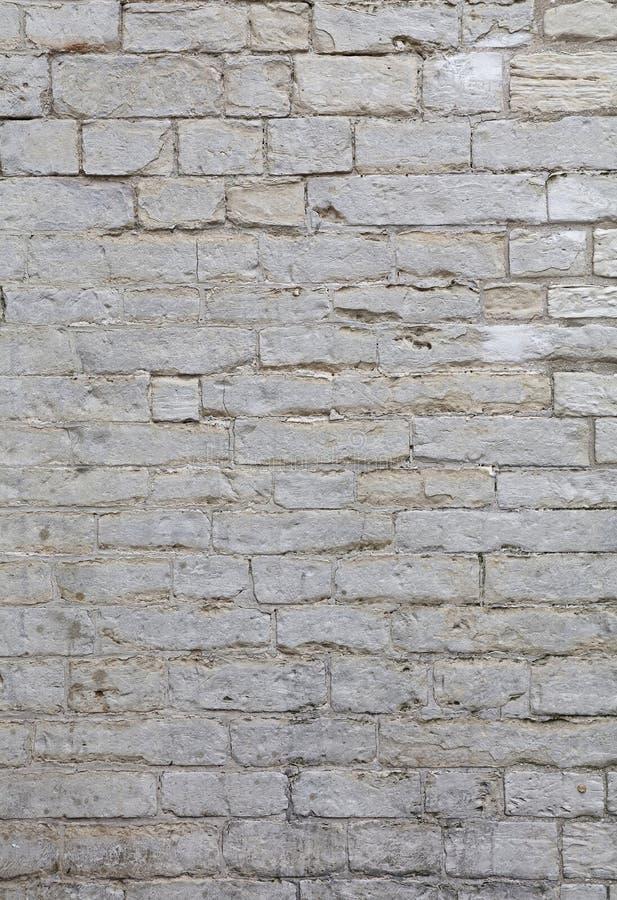 Ściana białe naciekowe adarce kamienia cegły obrazy royalty free