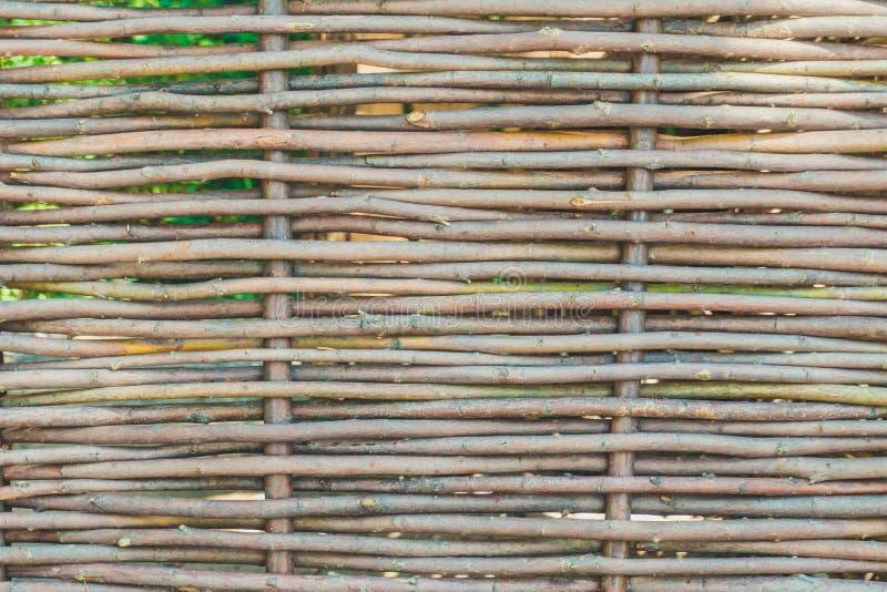 Ściana buda tkany winograd rozgałęzia się zdjęcie royalty free