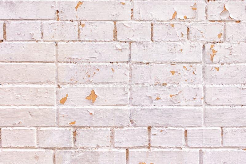 Ściana cegły różni rozmiary Powierzchnia jest malującym lekkim różowawym farbą Nieregularności, burzliwość i obieranie, obrazy royalty free