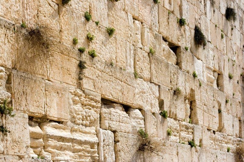 ściana płaczu zdjęcie stock