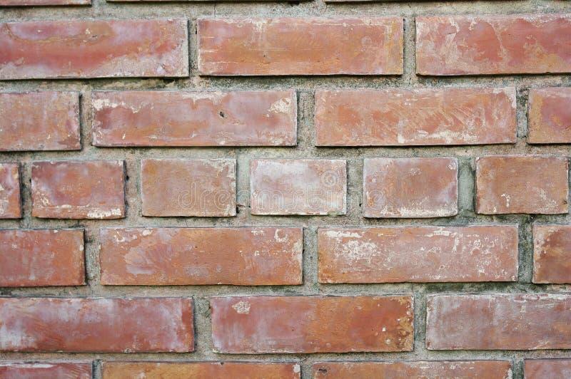 Ściana z cegieł obraz royalty free
