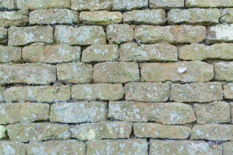 Ściana z cegieł craftsmanship fotografia stock