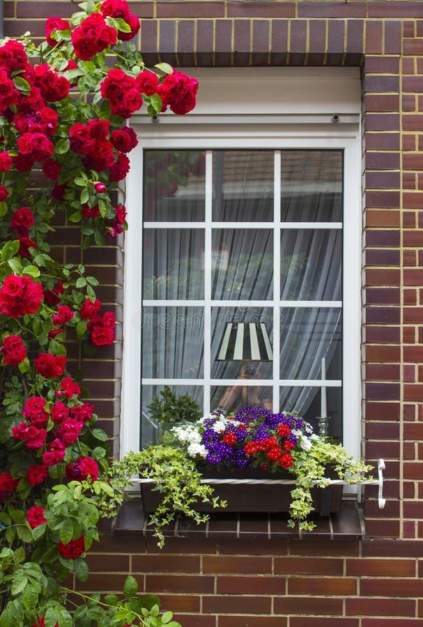 Ściana z cegieł z okno i kwiatem boksuje z kwiatonośnymi roślinami zdjęcie stock