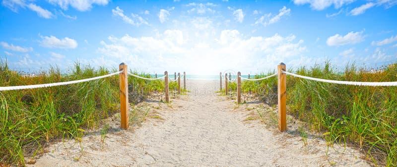 Ścieżka iść plaża piasek i ocean w Miami Wyrzucać na brzeg Floryda obraz royalty free