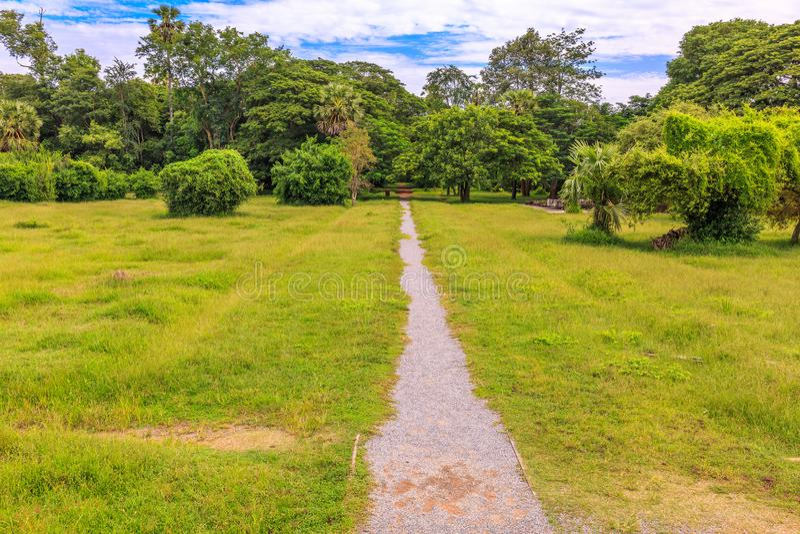 Ścieżka Iść przez Pięknej Zielonej trawy w parku obraz stock