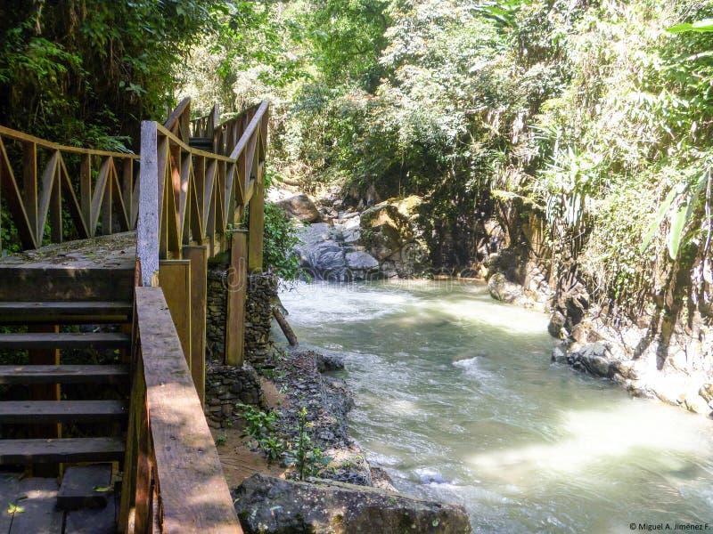 Ścieżka i rzeka obraz stock