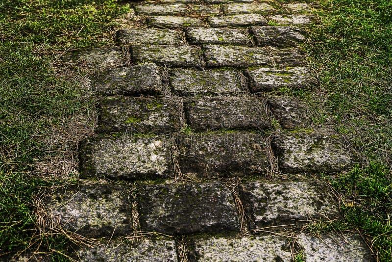 Ścieżka kłaść z cegłami prowadzi gdzieś obrazy stock