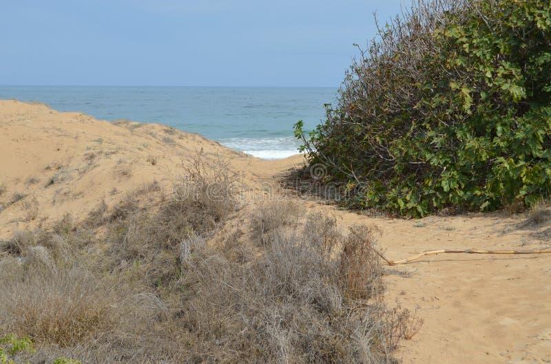 Ścieżka morze obraz stock