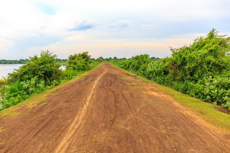 Ścieżka na Spokojnej drodze gruntowej pod Chmurnym niebem obraz royalty free