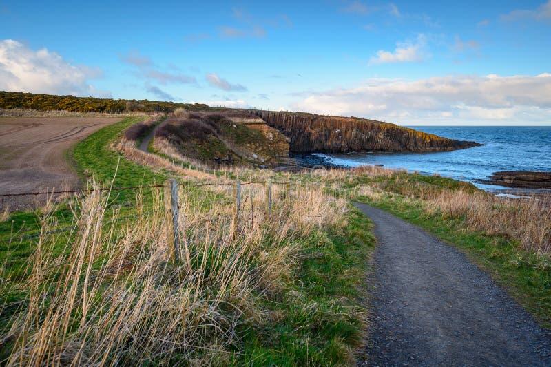 Ścieżka na wybrzeżu Northumberland w punkcie Cullernos zdjęcia royalty free