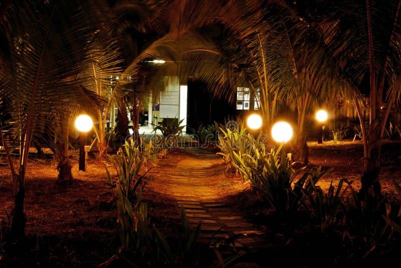 ścieżka noc zdjęcia stock