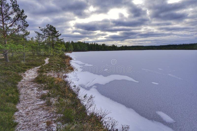 Ścieżka Obok jeziora zdjęcie royalty free