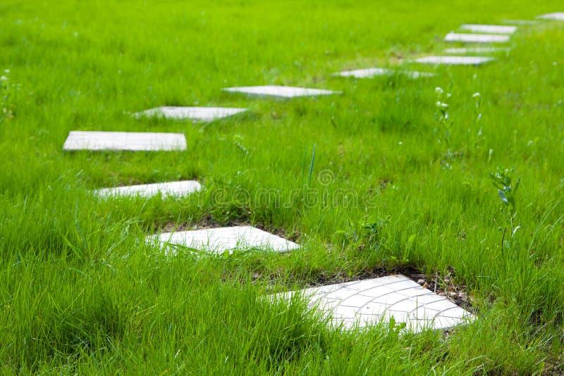 Ścieżka od talerzy na zielonej trawie fotografia stock