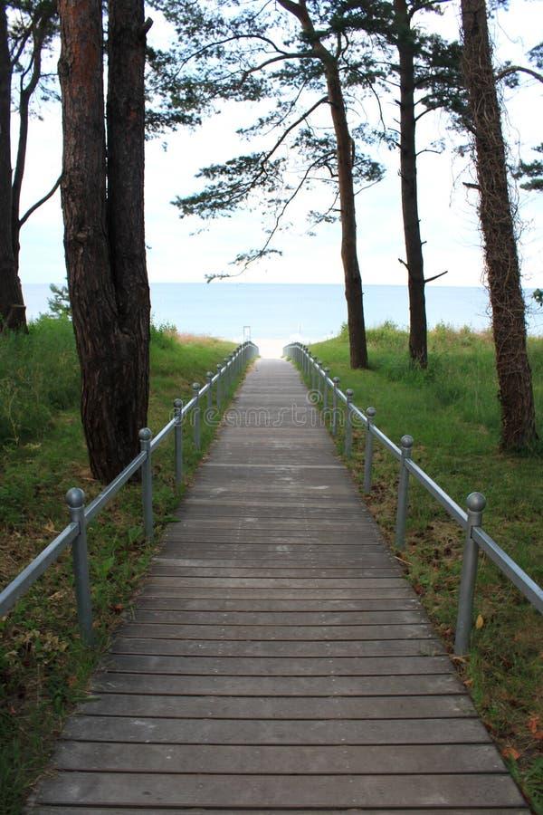 ścieżka plażowa zdjęcia stock