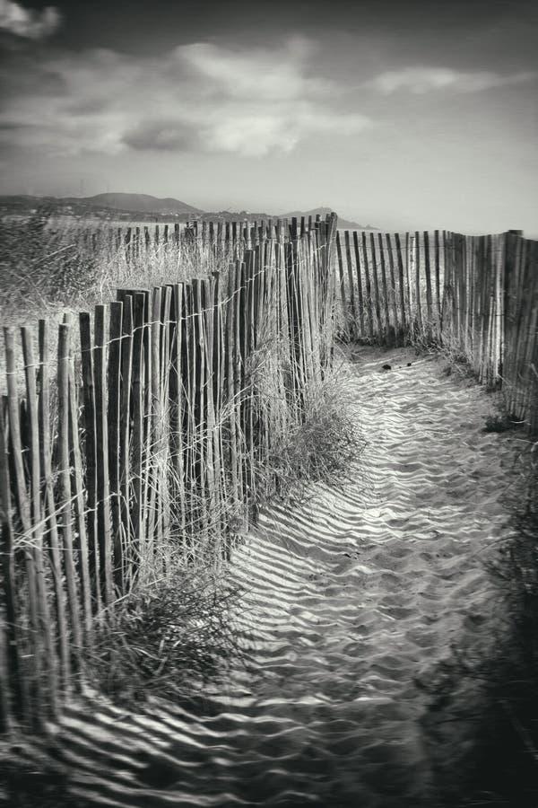 Ścieżka po środku piasek diun zdjęcie stock