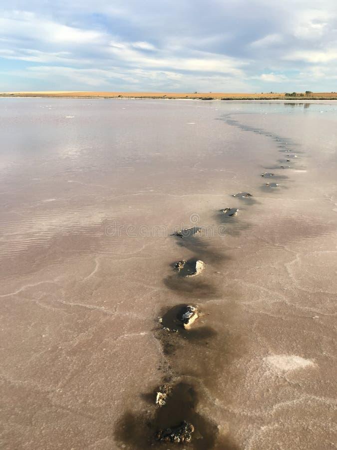 Ścieżka przez słonego jeziora fotografia stock
