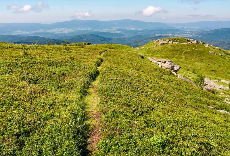 Ścieżka przez trawiastej łąki ogromni głazy obraz royalty free