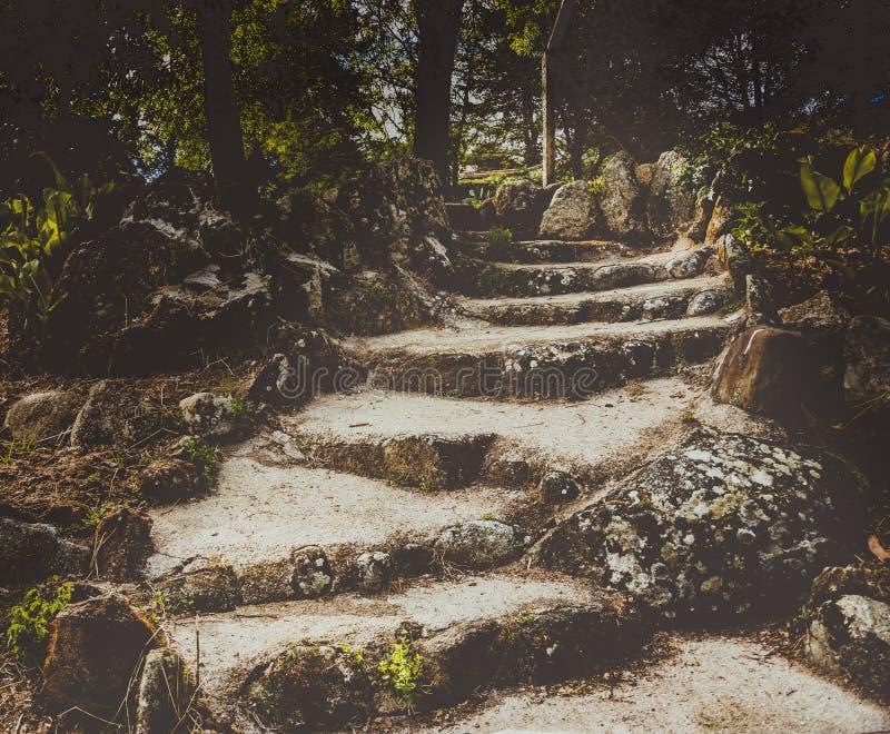 Ścieżka robić kamienie zdjęcia royalty free