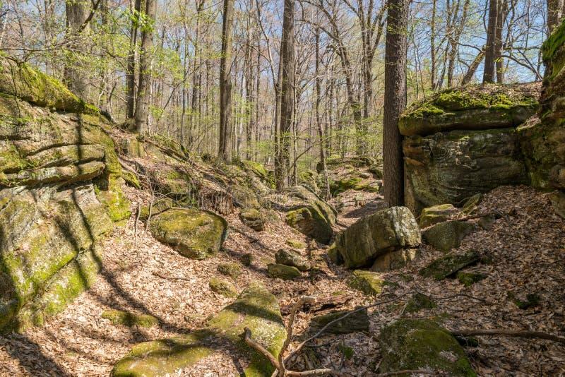 ścieżka rocky obrazy stock