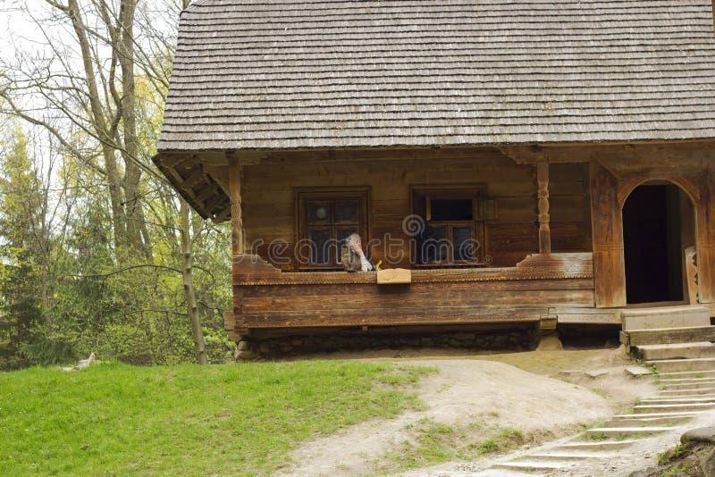 Ścieżka stwarzać ognisko domowe i stary drewniany dom z starą kobietą i kotem zdjęcie royalty free