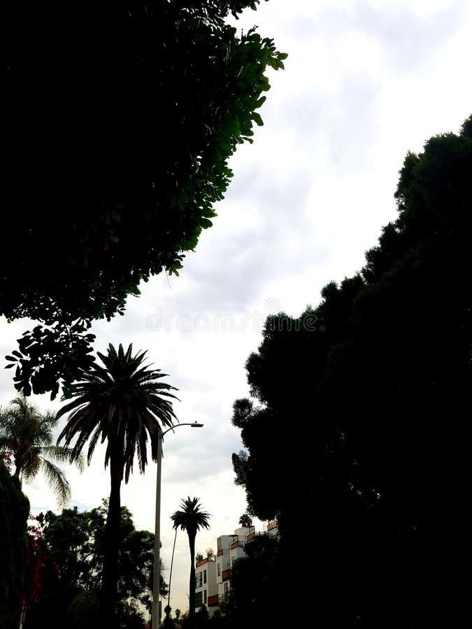 Ścieżka w niebie obraz stock