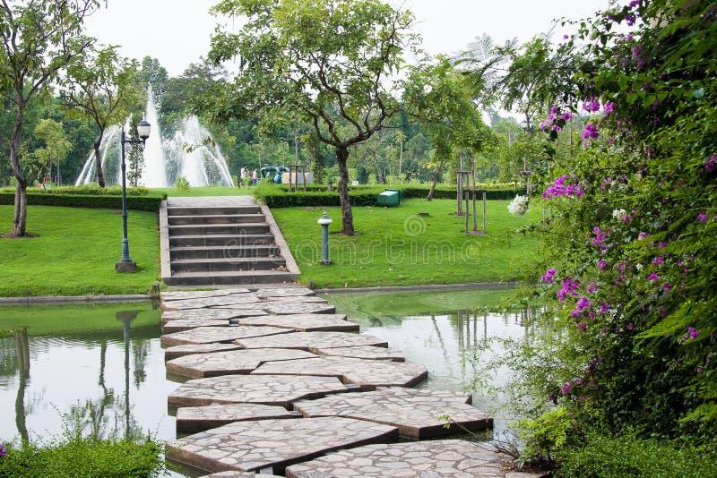Ścieżka w ogródzie zdjęcie royalty free