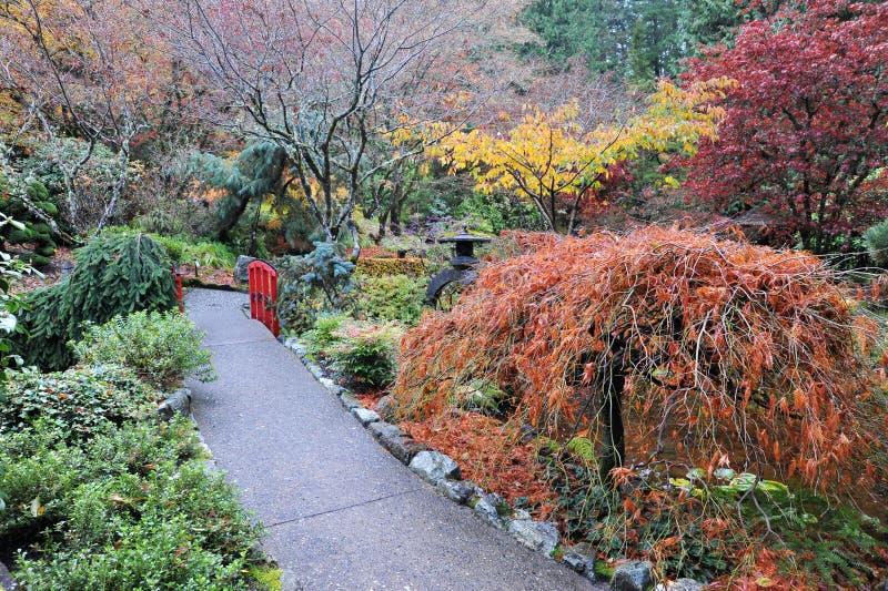 Ścieżka w ogródzie obrazy stock