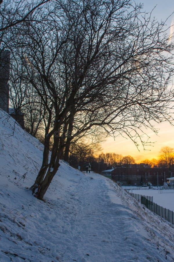 Ścieżka w pobliżu stoku w śnieżnym parku w Tallinie o zachodzie słońca Estonia obrazy royalty free