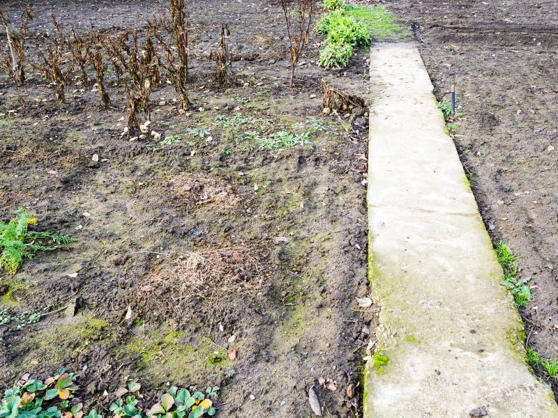 Ścieżka w pustym ogródzie w zimie zdjęcie stock