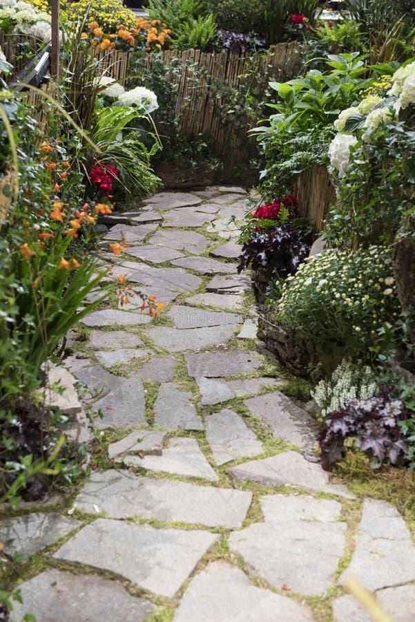 Ścieżka z jesień kwiatami obraz stock