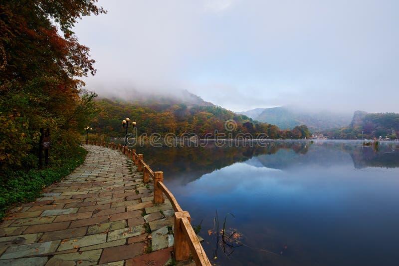 Ścieżki brzeg jeziora w ranku scenicznym obrazy royalty free