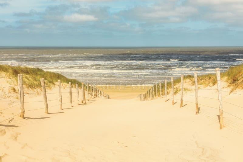 Ścieżki synklina diuny plaża Zandvoort, holandie obraz stock