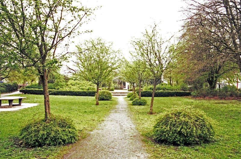 Ścieżki synklina park między łąkami fotografia royalty free