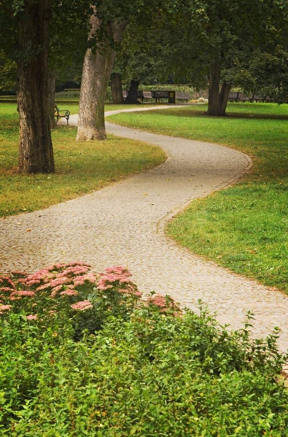 Ścieżki zieleni park zdjęcie royalty free