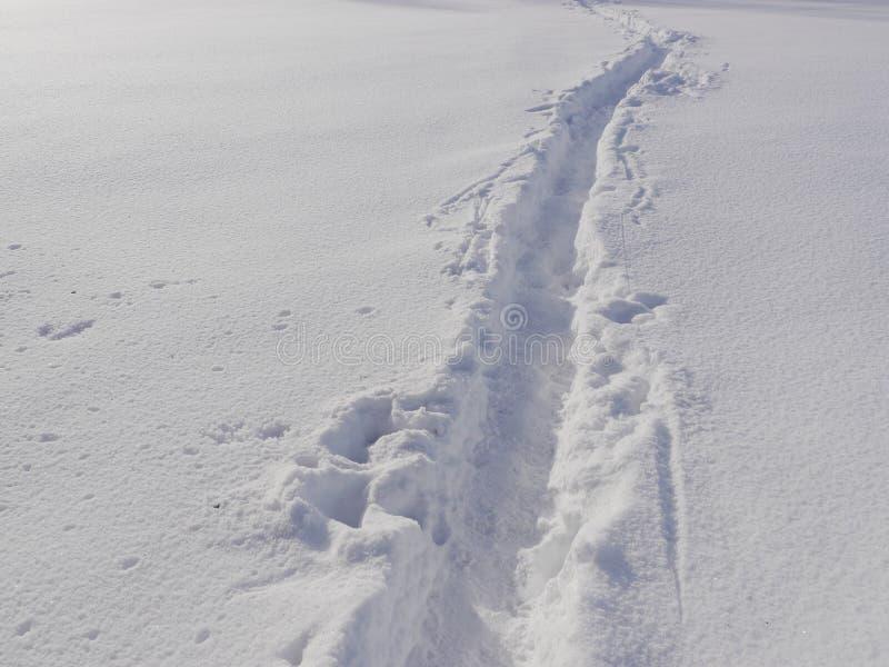 Ścieżki zimy krajobraz obraz stock