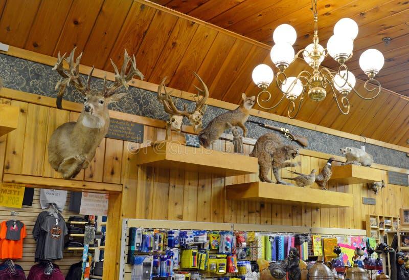 Ścienna apteka, Południowy Dakota, Usa fotografia royalty free