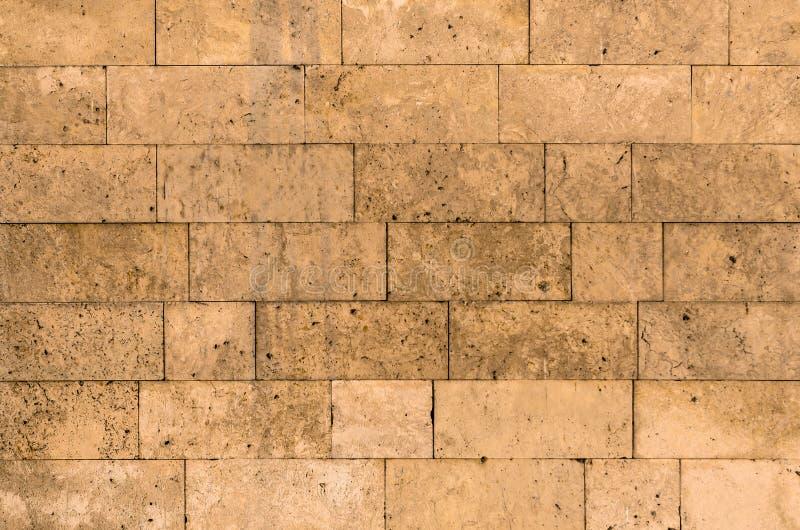 Ścienni tekstur cegieł bloki skorupa kamienia morza kamień obraz royalty free