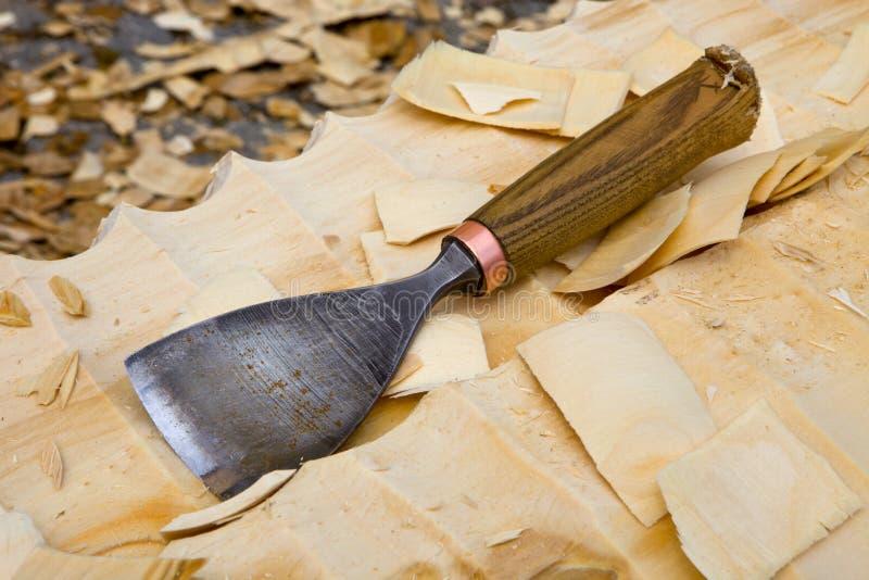 Ścinak kłaść na drewnie obrazy royalty free
